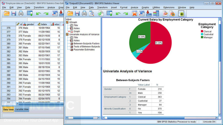 IBM SPSS Statistics Crack Serial Key